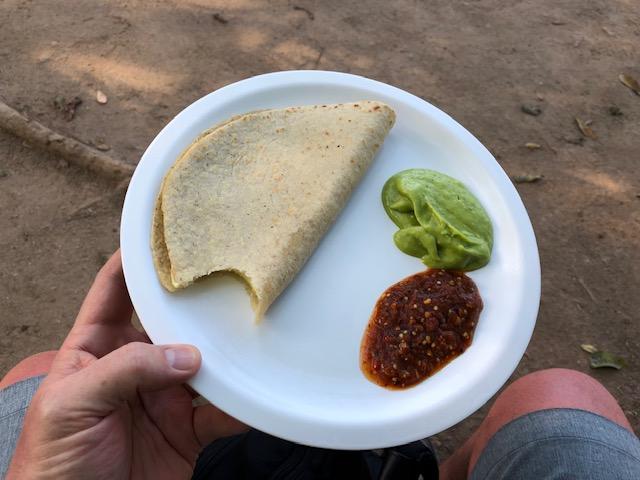 Cheese quesadilla with guacamole and hot salsa