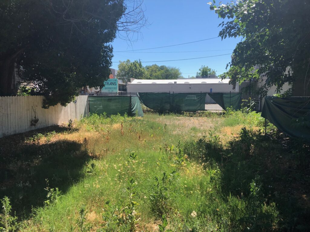 The vacant lot from the street