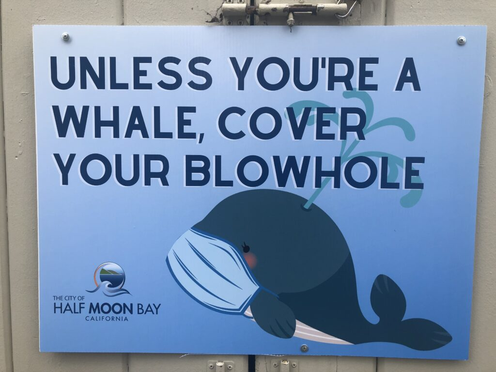 "Sign with a cartoon whale wearing a mask and read ""unless you're a whale, cover your blowhole"""