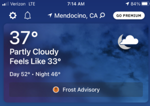 """screen shot of weather showing 37 but """"feels like 33"""""""